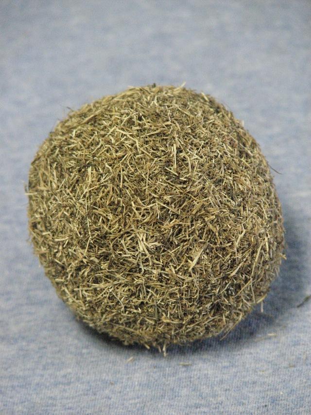 Seaweed Ball