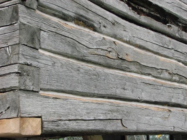 Cabin Repairs Day 4 006.JPG