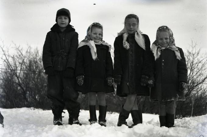 snow060